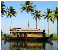 Backwater Tour, Alleppey