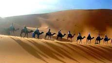 Jaisalmer Desert, Jaisalmer Tour Packages